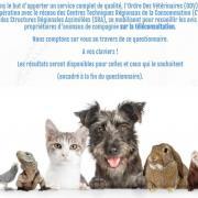 Enquete teleconsulatation veterinaire