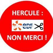 Hercule non merci
